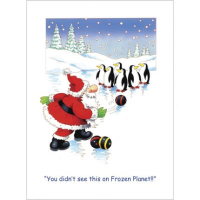 pinguins christmas card
