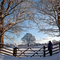 snowscene personalised christmas card